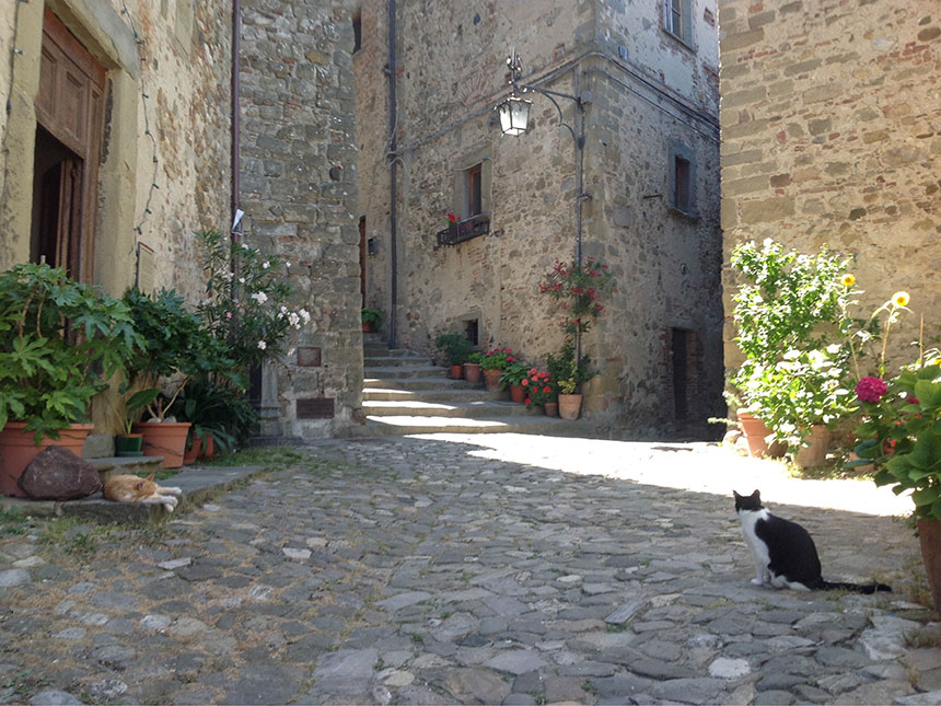 Anghiari, site of the famous battle, is a short drive away.